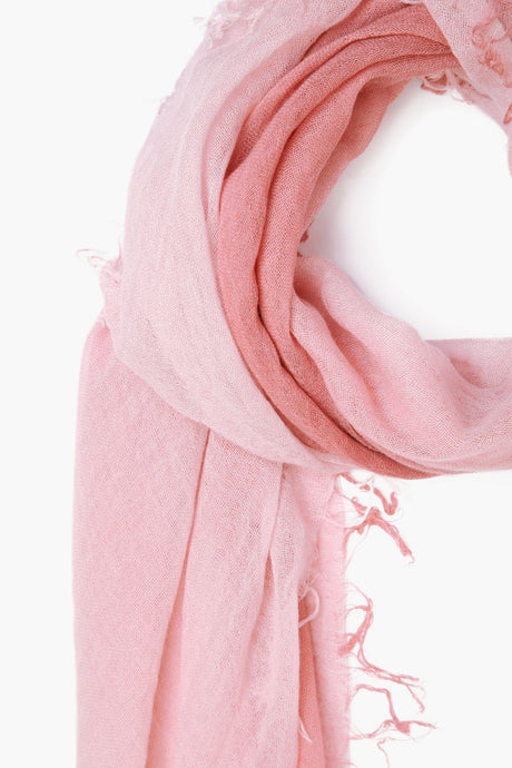 Ash Rose Marsala Dip-Dyed Cashmere and Silk Scarf