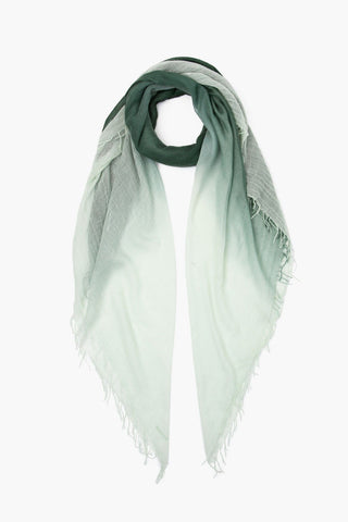 Sycamore Green Lily Dip-Dyed Cashmere and Silk Scarf