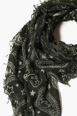 Urban Chic Paisley Cashmere and Silk Scarf