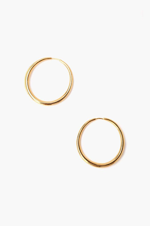 Gold Petite Oblong Hoop Earrings