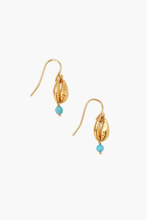 Turquoise Cowry Shell Earrings