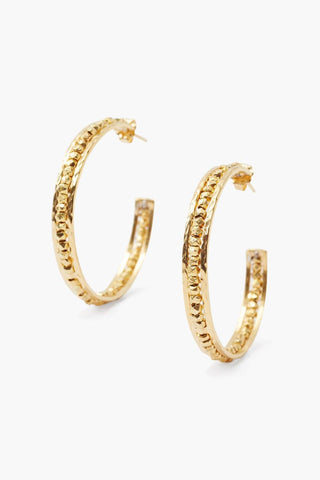 Yellow Gold Sedona Hoop Earrings