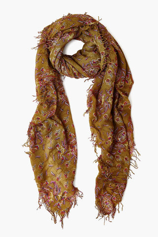 Lizard Paisley Cashmere and Silk Blend Scarf