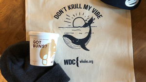 Healthy Ice Cream Joins Forces with Whale and Dolphin Conservation Group