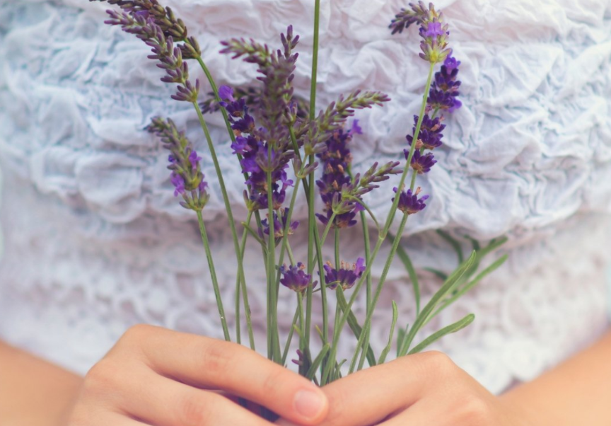 Healing Power of Lavender