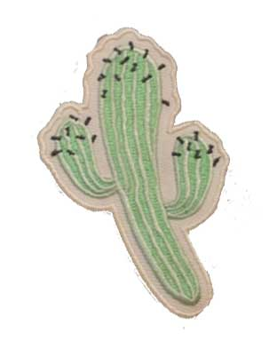 Mint Green Cactus Patch
