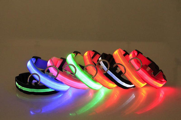 Premium Glow-In-The-Dark LED Safety Collar - Go Shopping Best