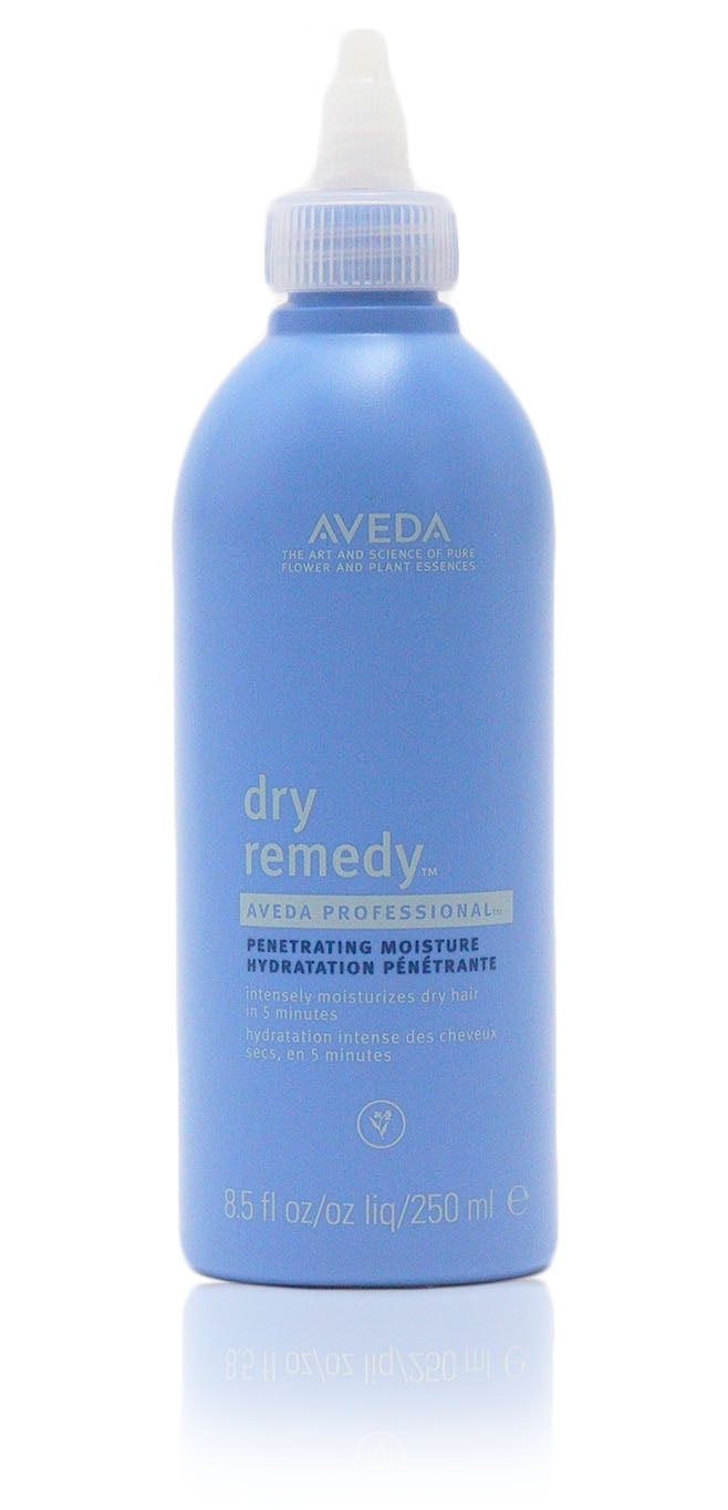 Aveda Dry Remedy Penetrating Moisture, 8.5 oz