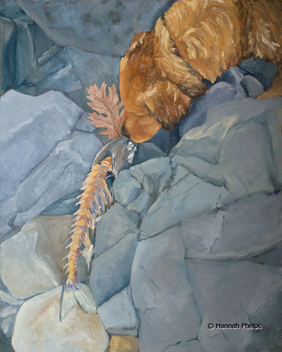 oil painting of a golden retriever puppy sniffing a dead fish by artist Hannah Phelps