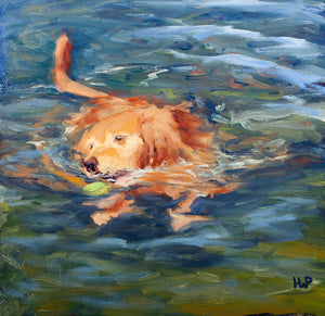 Oil painting of a Golden Retriever dog swimming by artist Hannah Phelps