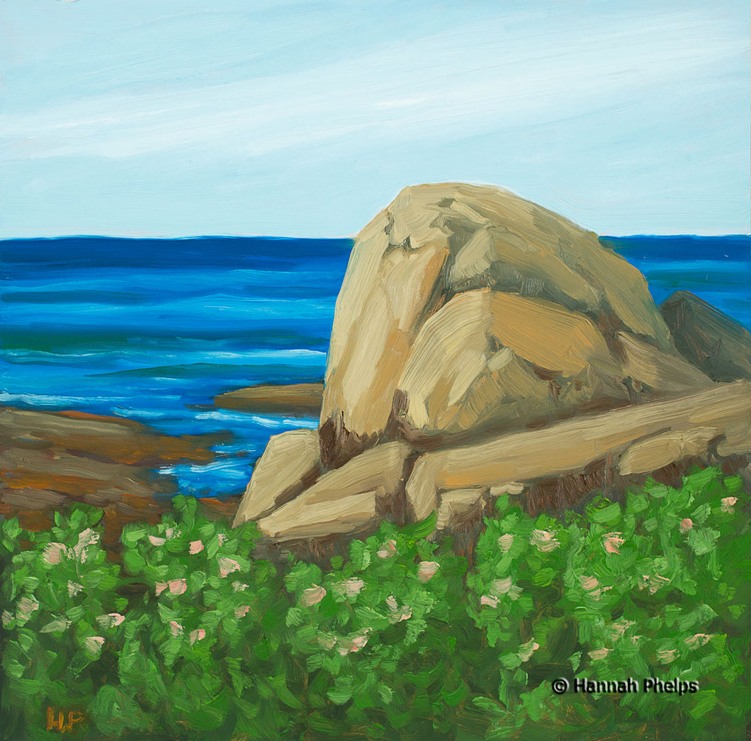 Oil painting of a beach roses by the ocean in Rye, NH by New England artist Hannah Phelps