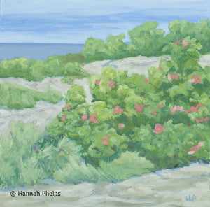 Oil painting of beach roses on the rocky coast of Maine by artist Hannah Phelps