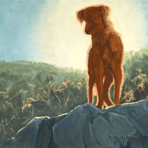 Wet Dog in the Sun, digital reproduction
