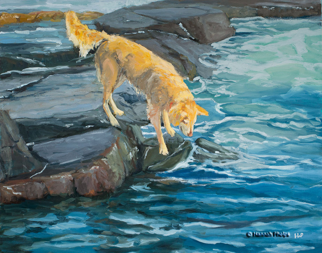 Oil painting of a Golden Retriever dog playing by the sea by New England artist Hannah Phelps
