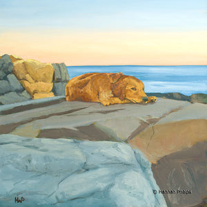 Oil painting of a golden retriever dog and a dramatic evening sky on the coast of New England by artist Hannah Phelps.