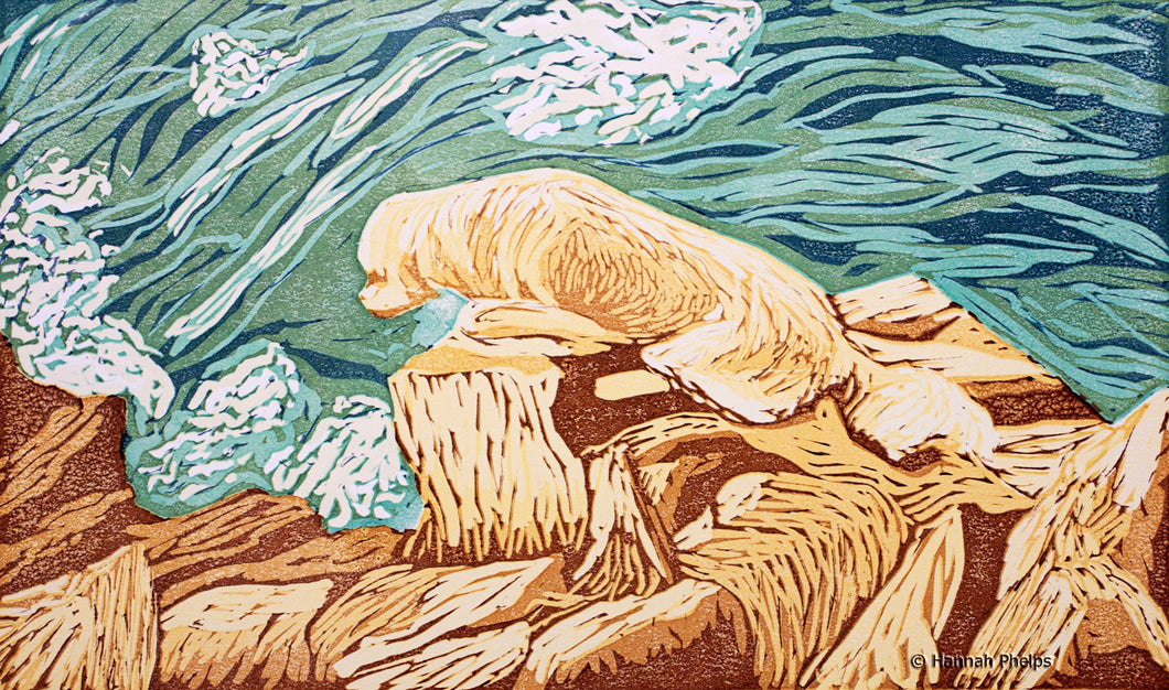 Print of a golden retriever on playing on the New England coast by artist Hannah Phelps