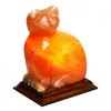 Natural Himalayan Salt Cat Shaped Lamp By Evolution Salt