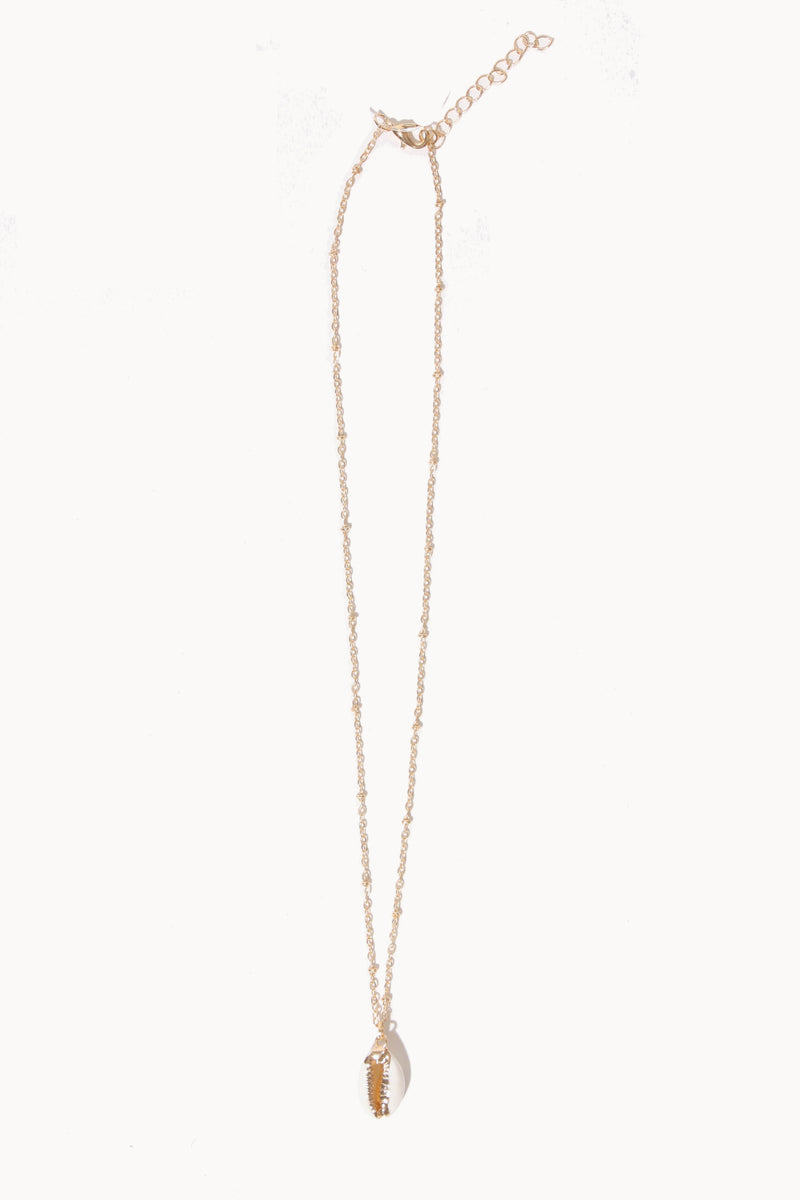 Single Shell Necklace, Accessories - Repertoire NZ, New Zealand Fashion, Womenswear, Womens Clothing