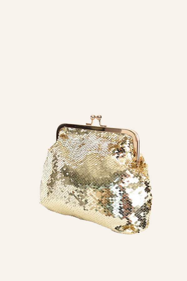 Sequin Metal Frame Small Purse