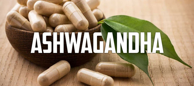 Ashwagandha, A Stress Relieving Testosterone Booster