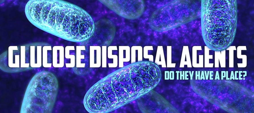 Glucose Disposal Agents: Do They Have A Place?