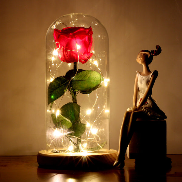 Enchanted Rose Lamp - Pajamas Haven