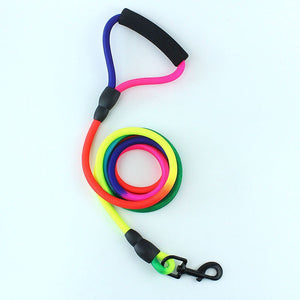 Rainbow Nylon Leash For Medium and Large Dogs