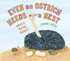 Even an Ostrich Needs a Nest: Where Birds Begin
