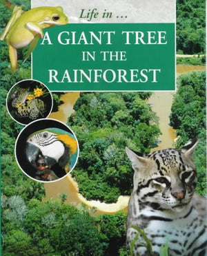 A Giant Tree in the Rainforest (Life In--)