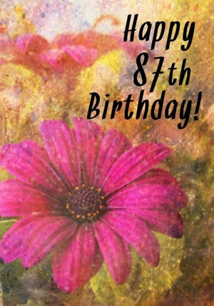 Happy 87th Birthday: Birthday Memory Book, Birthday Journal Notebook For 87 Year Old For Journaling & Doodling, 7 x 10, (Birthday Keepsake Book)