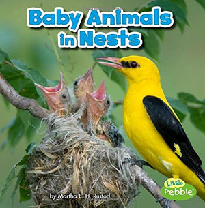 Baby Animals in Nests (Baby Animals and Their Homes)