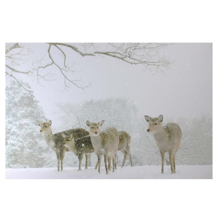 Large Fiber Optic Lighted Winter Woods with Deer Canvas Wall Art 23.5