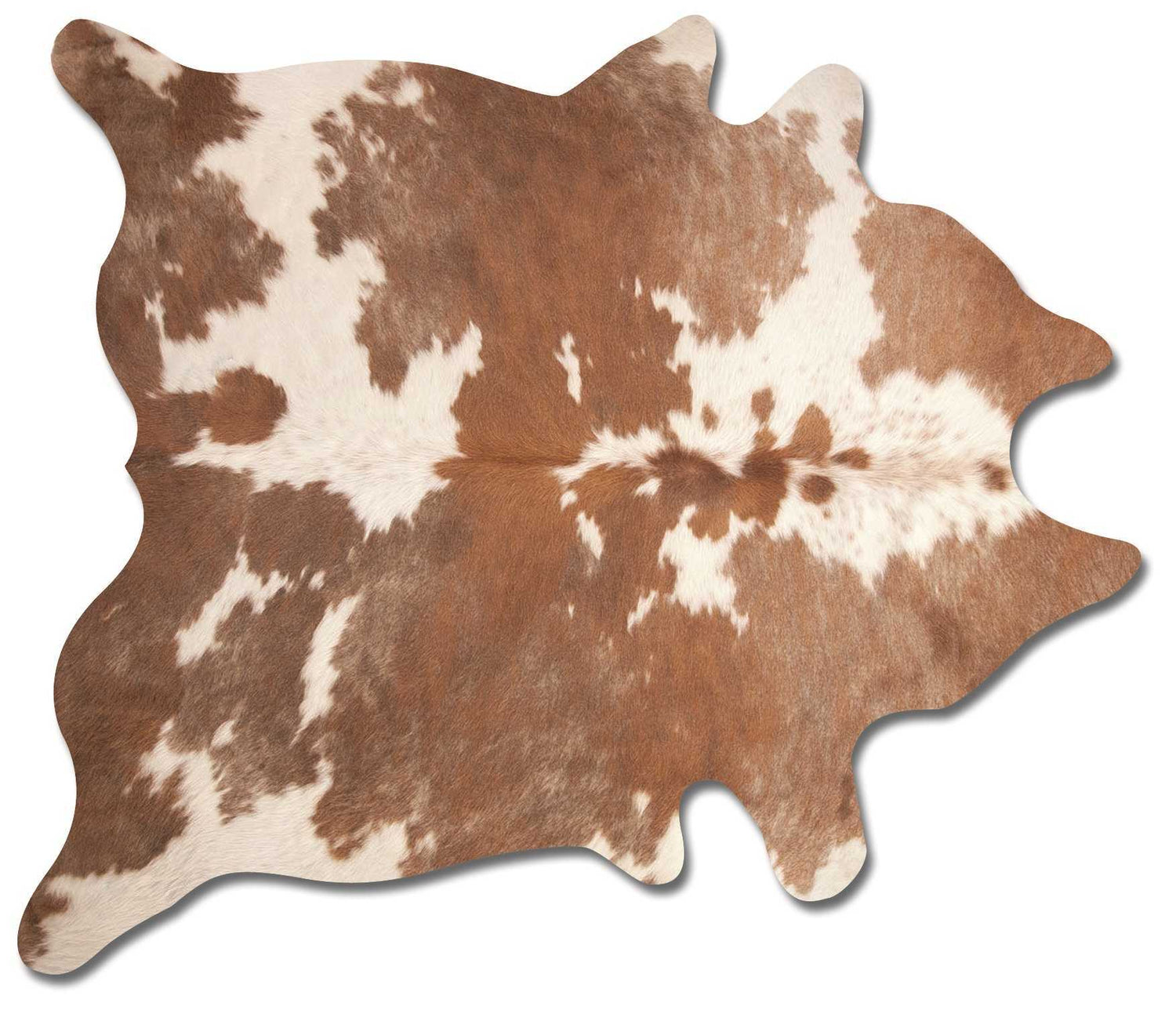 Kobe 6' X 7'  Genuine Brazilian Cowhide Rug - Brown & White