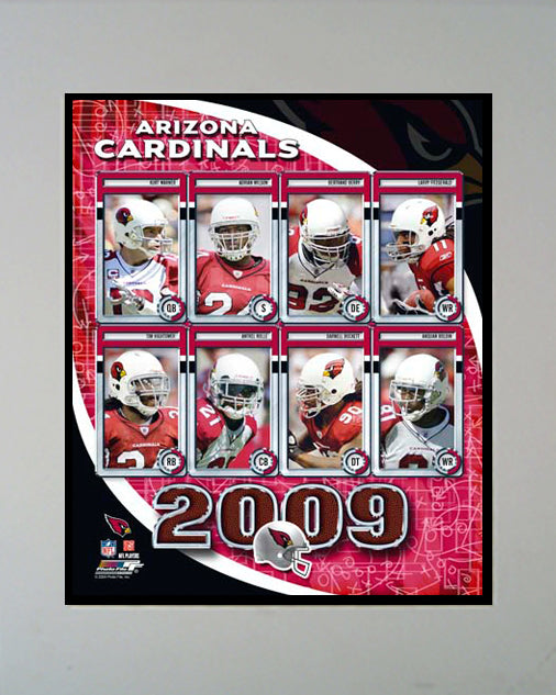 11x14 Mat - 2009 Arizona Cardinals