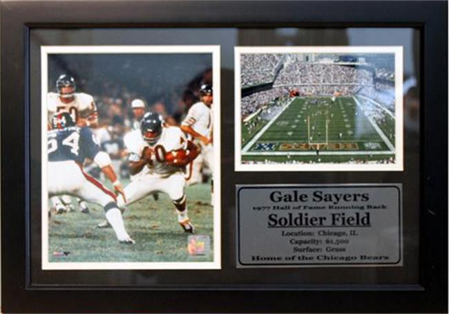 12x18 Photo Stat Frame - Gale Sayers Chicago Bears