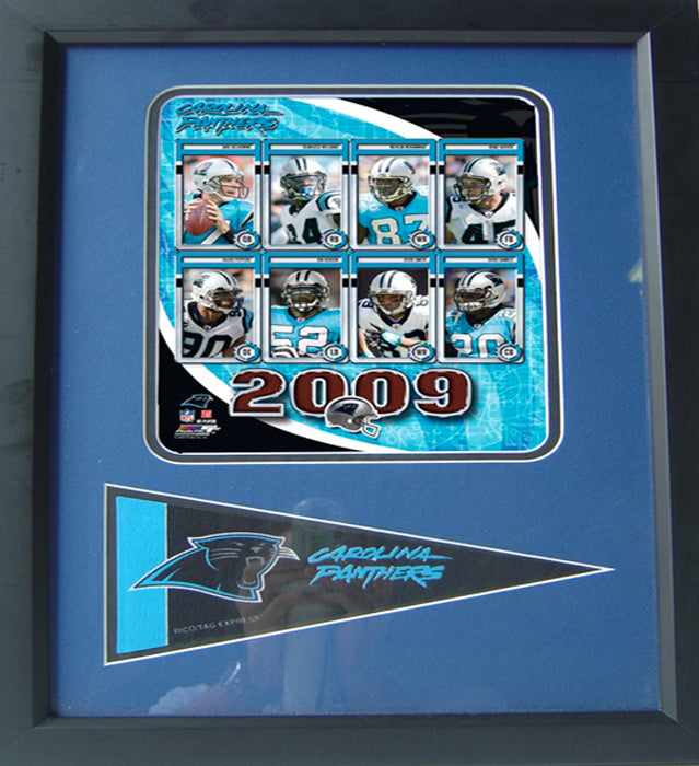 12x18 Pennant Frame - 2009 Carolina Panthers