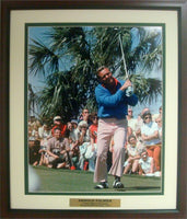 20x24 Custom Frame - Arnold Palmer Palm Tree