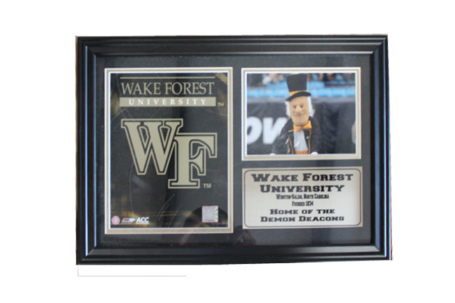 12x18 Photo Stat Frame - Wake Forest