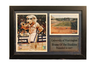 12x18 Photo Stat Frame - Univ of Washington