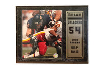 12x15 Stat Plaque - Brian Urlacher Chicago Bears