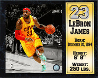 12x15 Stat Plaque - Lebron James Cleveland Cavaliers