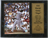 12x15 Stat Plaque - David Ortiz Boston Red Sox