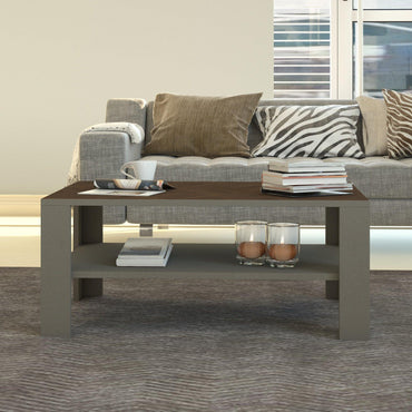 "Linea 36"" Wide Accent Coffee Table with Storage Shelves - Decorotika"