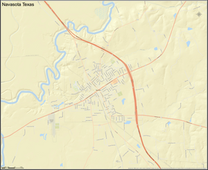 Navasota Texas Mini-Map - Houston Map Company