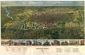 Houston Texas 1891 - Houston Map Company