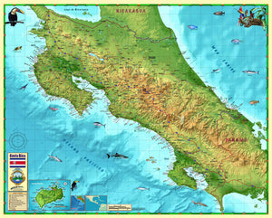 Costa Rica Wall Map - Houston Map Company