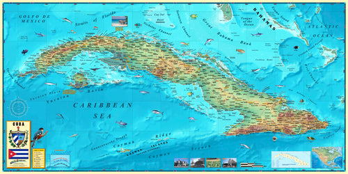 Cuba Wall Map - Houston Map Company