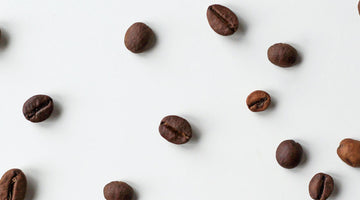 What's The Difference: Light, Medium & Dark Roast?