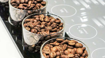 The Key Coffee Industry Trends For 2021 & Beyond