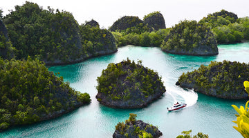 The Incredible Raja Ampat